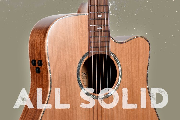 View our All Solid guitars