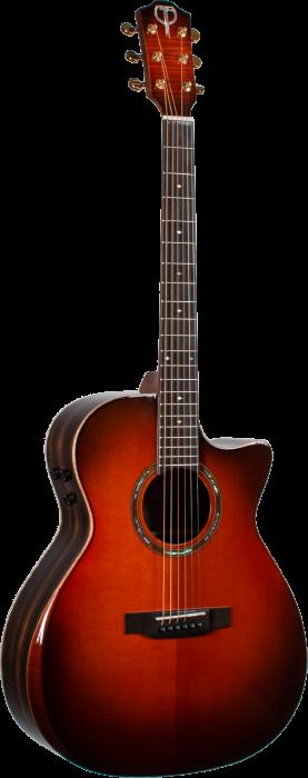 Picture of Autumn Burst Guitar Front
